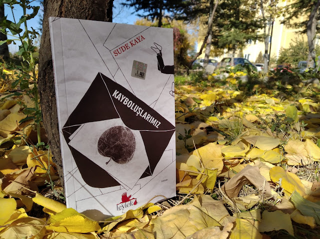 Kayboluşlarımız, Sude Kaya, Kırmızı Leylek Yayınları