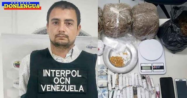 MOSCA NACHOS | Capturado Narcotraficante Italiano en la Isla de Margarita