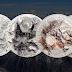 """""""THE 7 SUMMITS"""" OS SETE CUMES – Série comemorativa homenageia os sete cumes mais altos do planeta."""