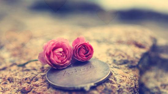 Ảnh đẹp tình yêu – Tổng hợp những hình ảnh tình yêu dễ thương nhất