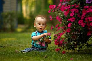 Sevimli Bebek Güzel Çocuk Sevimli Çocuk Yüz Sevimli Bebek Kutlama Çocuk Yılbaşı Santa Sevimli Oğlan Çocuklar Sevimli Eğlence Kız Mutluluk Sevimli Çocuk Noel Bebek Sevimli Mavi Gözler Sonbahar Sonbahar Erkek Bebek Çocuk Sevimli Çocuk Açık Parkı