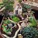 35+ Beautiful Fairy Garden Ideas
