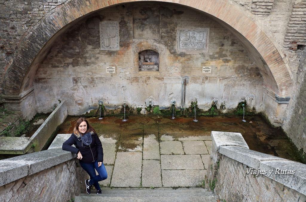 Fontana del Duca, Castell'Arquato, Piacenza, Italia