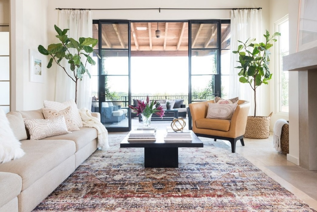 Rug Ideas for Living Room: Oushak Rugs