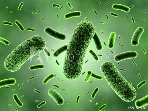 जीवाणु और विषाणु से होने वाले रोगो को याद करने की ट्रिक