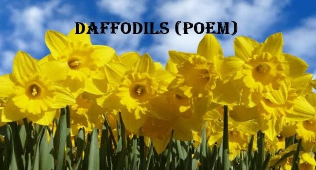 Daffodils (Poem) 9th English - Rashid Notes
