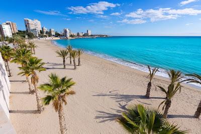Truco conoce afondo Alicante
