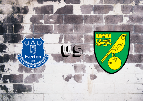 Everton vs Norwich City  Resumen