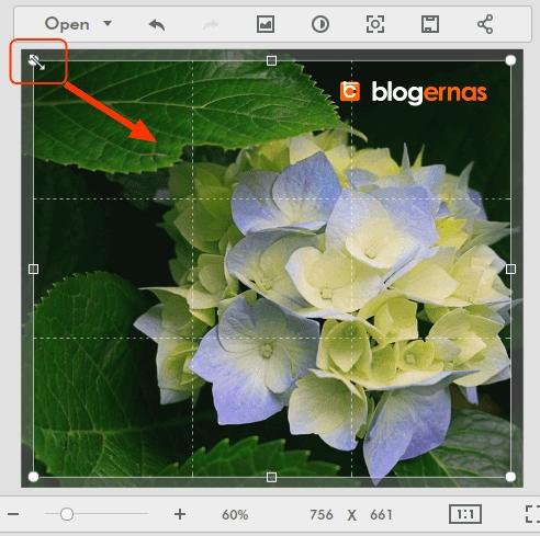Cara Crop Online Foto di Situs Fotor