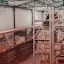 Jadi Agen Mitra Logistik, Salah Satu Bisnis Cuan di Kala Pandemi
