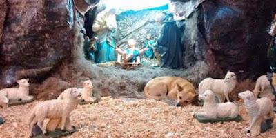 imagem de cachorro deitado no presépio durante santa missa