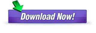 IDM download,
