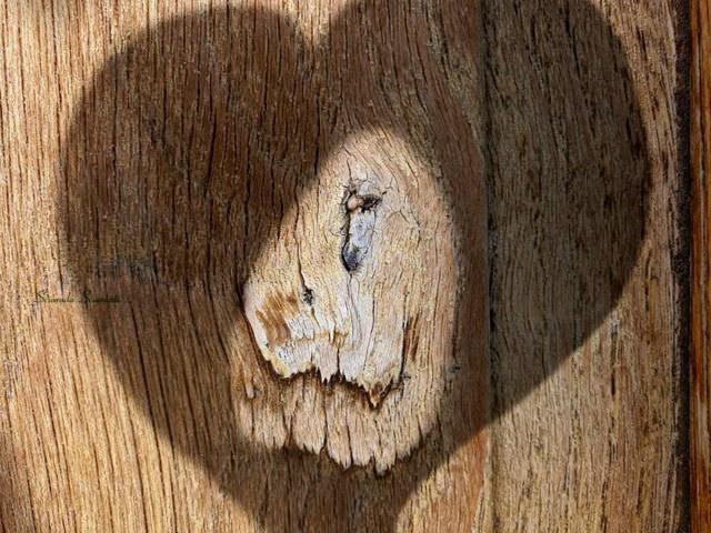 Figura di leone su porta con criniera a forma di cuore
