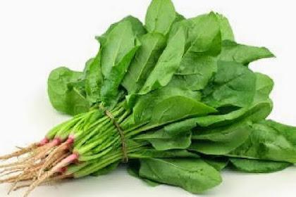 36 Sumber makanan yang mengandung vitamin A tertinggi