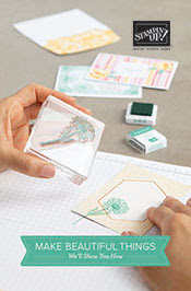 https://www.stampinup.com.au/search/Beginner%20Brochure?ts=1592724604371