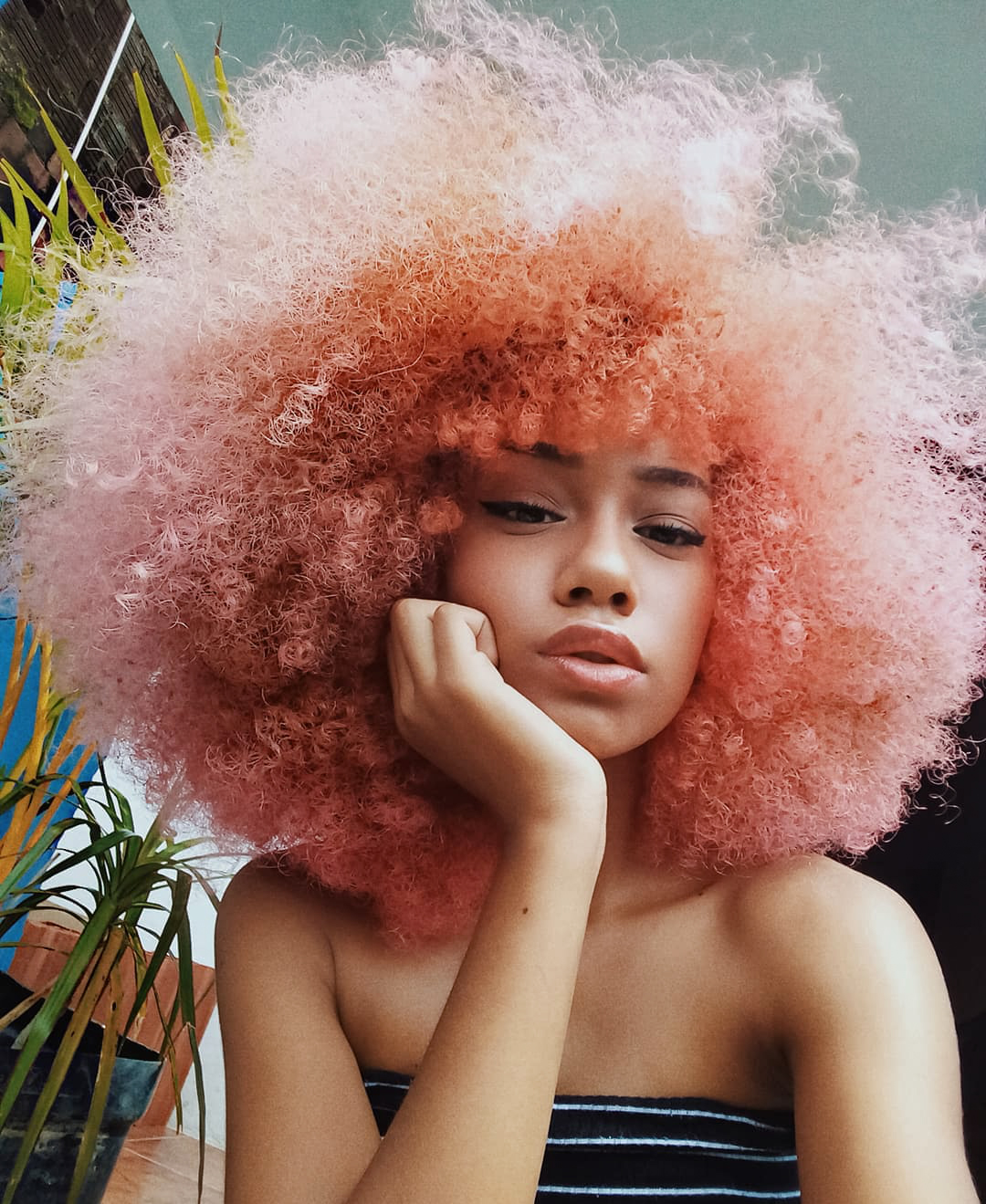 woman with big,pink afro hair