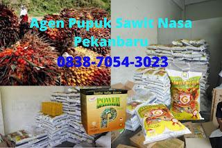 http://www.distributorpupuknasa.com/2020/03/harga-pupuk-sawit-nasa-pekanbaru.html