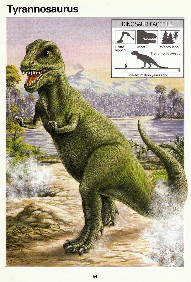 Chased Dinosaurs Books