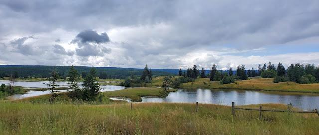 Beautiful view of a lake just pass Williams Lake