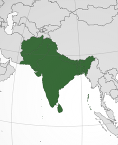 SOUTH ASIA AND ITS COUNTRIES