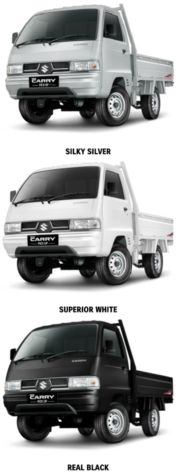 Warna-Carry-Pick-Up