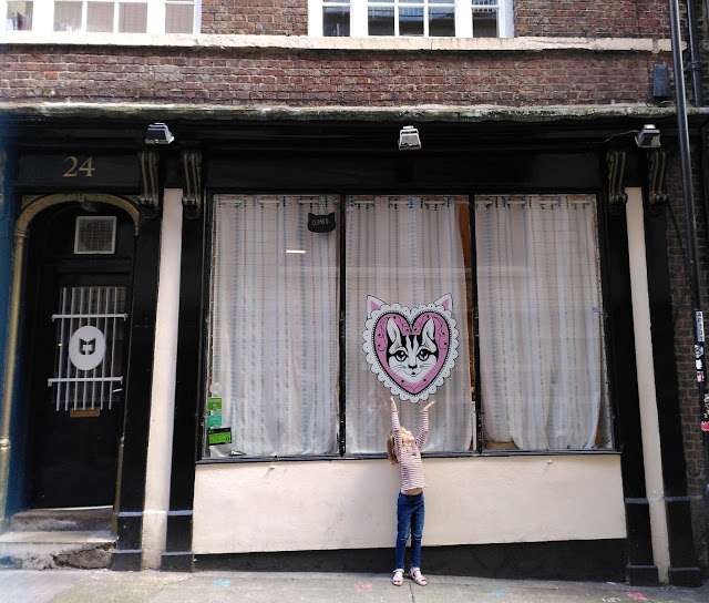Mog on the Tyne   Newcastle Cat Cafe Review - location