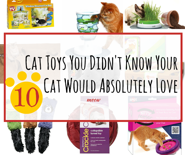 10 Cat Toys You Didn't Know Your Cat Would Absolutely Love