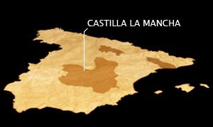 Südlich von Madrid erstreckt sich das Zentralplateau Castilla-La Mancha, ein ideales Weinanbaugebiet – heiß im Sommer, kalt im Winter.