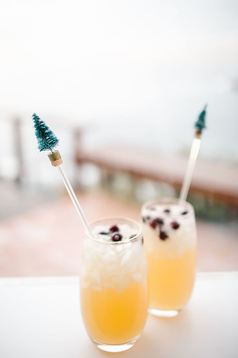 8 Cocktails To Serve At Your Upcoming Holiday Festivities | Kayla Lynn