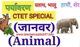 CTET, STET पशुओं से संबंधित महत्वपूर्ण रोचक तथ्य