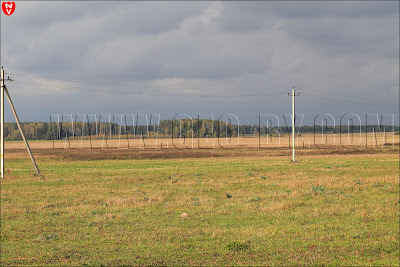 Пейзаж у полукапонира. Леса у Застебье