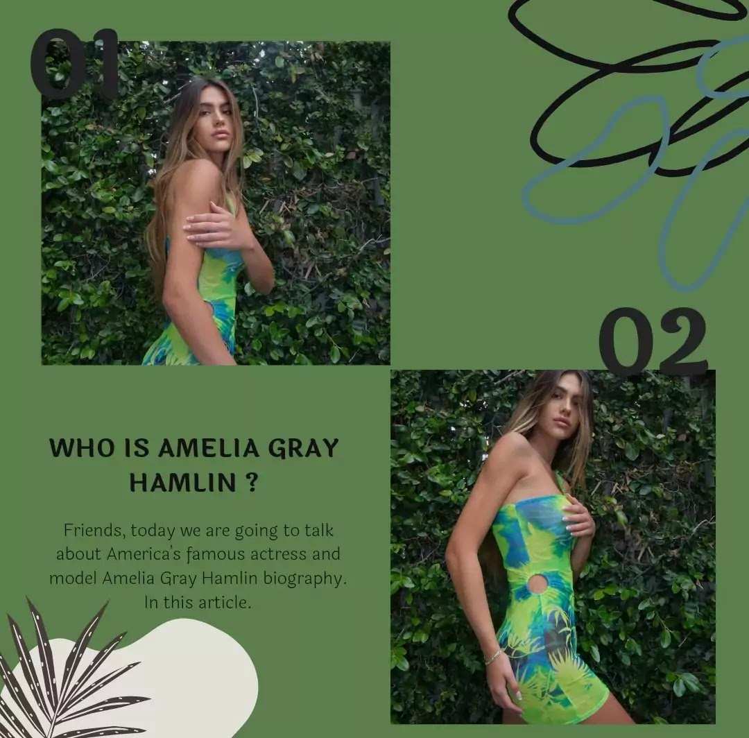 Amelia Gray Hamlin Biography