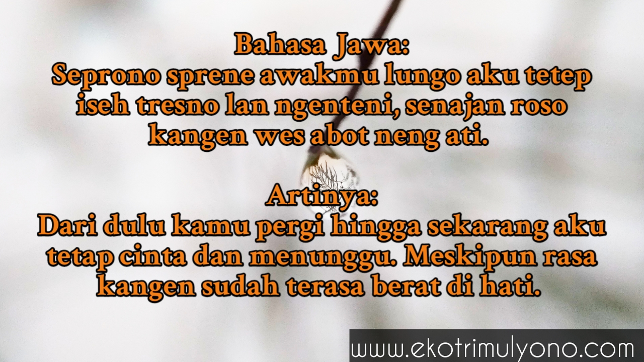 Kata Kata Kangen Bahasa Jawa Dan Artinya Pengen Nangis