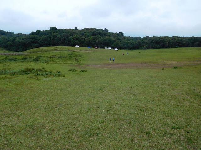 Mawphlang Sacred Forest, Meghalaya