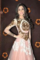 HeyAndhra Tippu Heroine Kanika Kapoor Glam Photos HeyAndhra.com