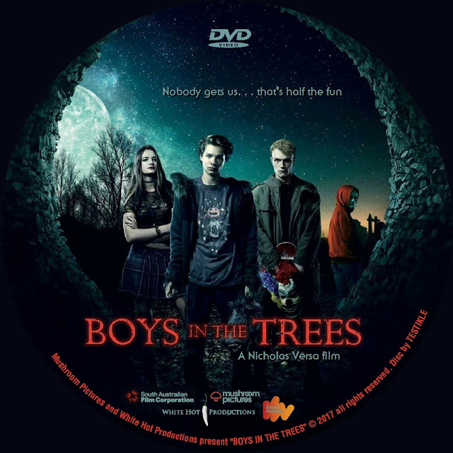 Boys In The Trees DVD Label