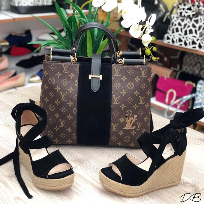Fashion Accessories: Collection of Designers Women Handbags and Shoes