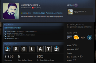SistemLinux Steam