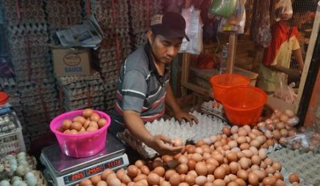 Teladan Dari Bapak Penjual Telur Ayam Kampung