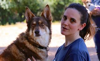 Ζερόμ, ο σκύλος – ηθοποιός με δική του καριέρα στην μεγάλη οθόνη