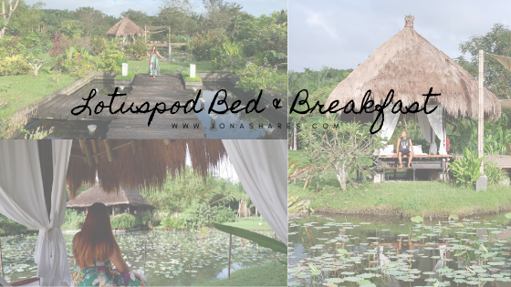 Lotuspod Bed and Breakfast, Bay, Laguna