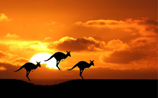 kangguru Australia