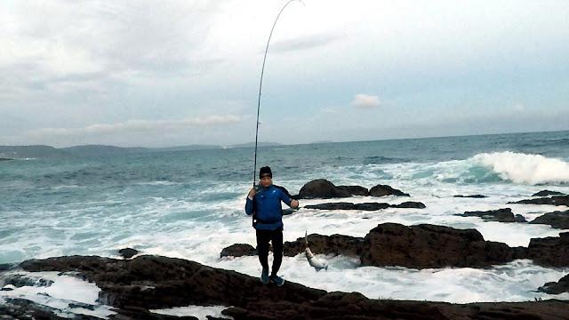 CA%25C3%2591A - Picadas lubinas muy cercanas a la costa