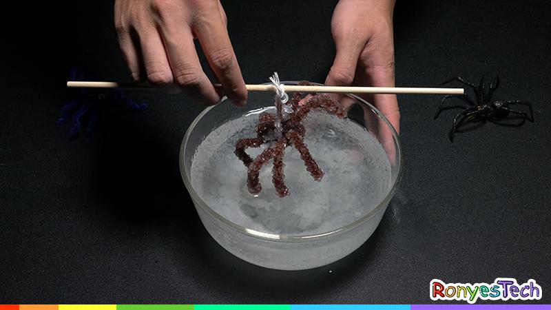 Grow A Halloween Spider Crystal Experiment