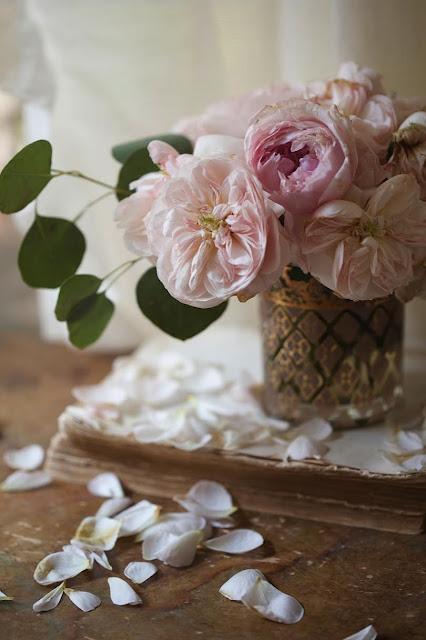 david austin garden roses and eucalyptus