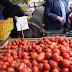 حاتم النجيب نائب رئيس شعبة الخضر: لا تأثير لفيروس الذبابة البيضاء على أسعار الطماطم حتى الآن