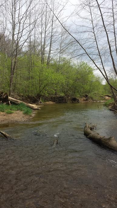 Mad river outfitters april 2016 for Fly fishing ohio