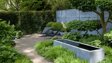 Hakonechloa, una gramínea ornamental que adora los jardines de sombra