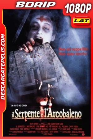 La Serpiente y El Arco iris (1988) 1080P BDRIP Latino – Ingles