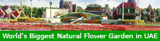 World Biggest Natural Flower Garden in UAE